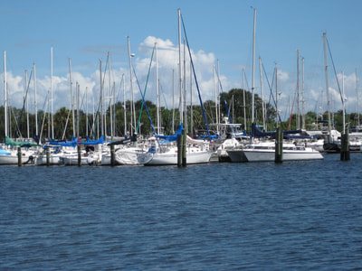 Marina in downtown St. Pete, FL.