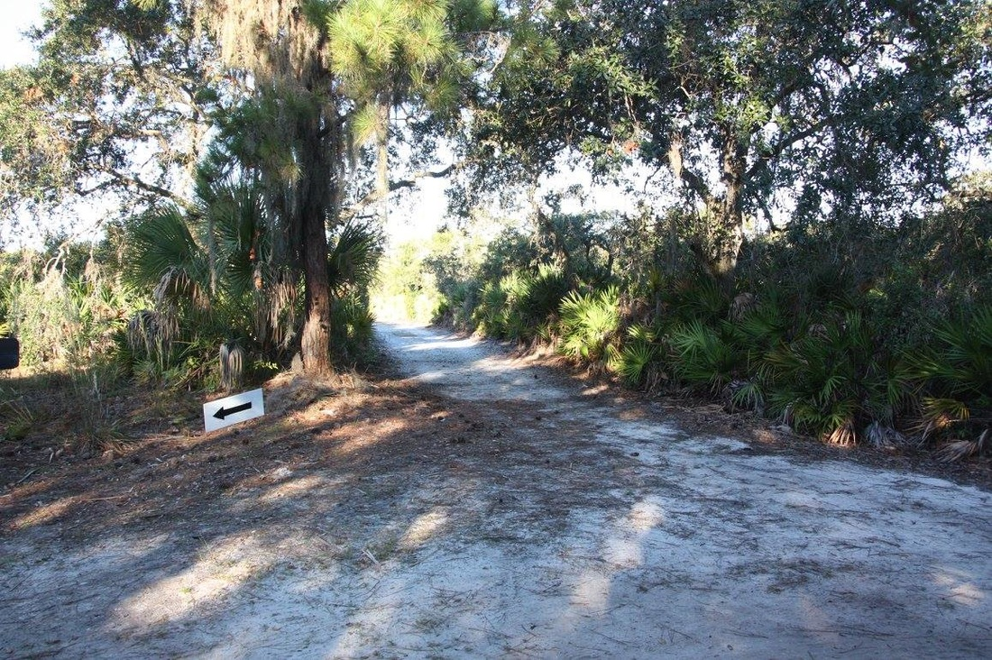 Sandy trail at Weedon Island Preserve in St Petersburg, FL