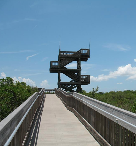 Observation Tower and Boardwalk at Weedon Island Preserve in St. Petersburg.